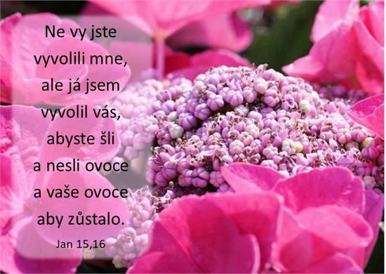 Jan 15,16